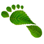 Carbon Footprint - leaves