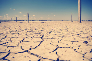 Australian Drought Stricken Land