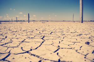 Australian Drought Stricken Land
